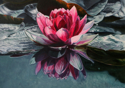 """Red Hot Lily Floats 1 18"""" x 24"""""""